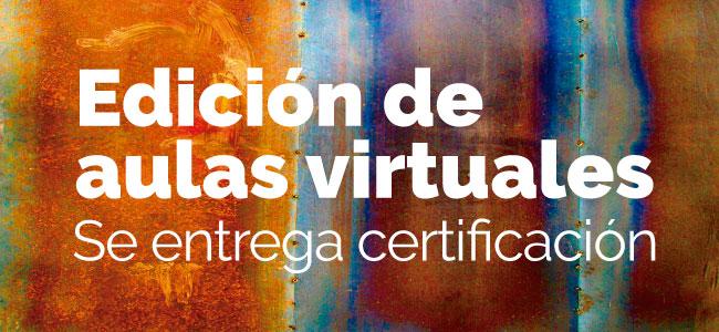 Taller de Capacitación Edición de aulas virtuales